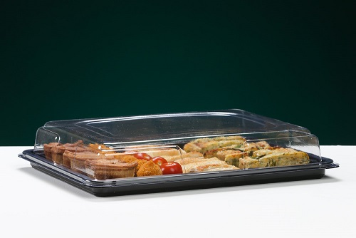 MEDIUM RECTANGULAR SANDWICH PLATTER COMPLETE WITH CLEAR LID