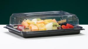 MINI RECTANGULAR SANDWICH PLATTER COMPLETE WITH CLEAR LID
