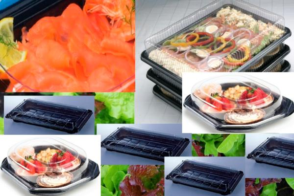 9 SANDWICH PLATTERS AND FOOD TRAYS COMPLETE WITH CLEAR LIDS